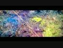 米津玄師 MV「Flowerwall」 thumbnail