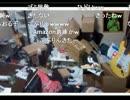 【ニコニコ動画】【くるる】 お部屋紹介「5年掃除をしていない部屋」 【渋谷のキング】を解析してみた