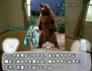 【ニコニコ動画】【ゆっくり解説】やる夫で学ぶ巨大生物10【ヒグマ】を解析してみた