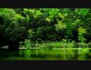 【ニコニコ動画】Spring Water Village (Preview)を解析してみた