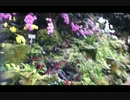 植物公園大温室