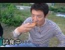 修転車【松岡修造xポケモン自転車BGM】