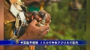 【新唐人】中国製手榴弾 1ドルで中央アフリカで販売