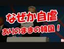【ニコニコ動画】【何故か自虐】 ありのままの韓国を解析してみた