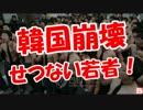 【ニコニコ動画】【韓国崩壊】若者の願い!を解析してみた