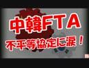 【中韓FTA】不平等協定に涙!