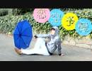 【あずっち】恋空予報【踊ってみた】 thumbnail