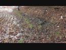 【ニコニコ動画】まったり農家な一日を解析してみた