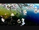 【ニコニコ動画】【春ニカ祭2015】Reset【NNI】を解析してみた