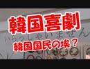 【ニコニコ動画】【韓国喜劇】 韓国国民の埃?を解析してみた