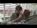 NO LIMIT -ノーリミット- 第95話(4/4)