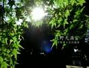 【ニコニコ動画】【高画質】古社の風景 ~山城 北野天満宮~を解析してみた