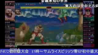 2015-03-15 中野TRF HYPER STREET FIGHTER II 大会後野試合