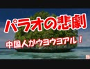【ニコニコ動画】【パラオの悲劇】 中国人がウヨウヨアル!を解析してみた
