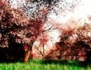 【ニコニコ動画】【NNIオリジナル曲】花信風を解析してみた