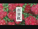 百日紅(さるすべり)~Miss HOKUSAI~ 予告編