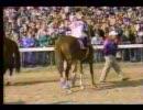 【競馬】 1991年 ブリーダーズカップジュヴェナイル アラジ