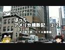 【ゆっくり】アメリカ横断記12 シカゴ観光編 CTA地下鉄