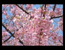 【ラジオ】真夜中ラジオ~シーズン2~第五夜(2015/3/21放送)