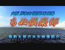 【ニコニコ動画】水中カメラ沈めてみた92 ちぬ倶楽部 魚影が凄い大阪高場を解析してみた