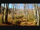 【ニコニコ動画】日本二百名山に登ってみた50 能郷白山編を解析してみた
