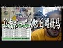 【ニコニコ動画】【中央競馬】プロ馬券師よっさんの日曜競馬 其の十八を解析してみた