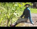 【ニコニコ動画】野良猫式  ジョニーの旅日記  第六話 春爛漫の時期がやって来たを解析してみた