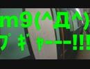 【ニコニコ動画】【旅動画】ぼすこは新दिल्लीで旅をする Part:37【印度カレー編】を解析してみた
