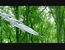 【ニコニコ動画】森海せいぶつを解析してみた