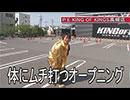 デッド オア アライブ 第382話(1/4)
