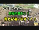 【ニコニコ動画】ちょっと大きな家庭菜園はじめてみる【第2回目】を解析してみた