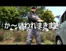 【ニコニコ動画】クルマで釣りに行こう♪ part 27 【シーバス&イワシ】を解析してみた