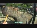 【ニコニコ動画】【FJR1300A】GWなので九州に行ってみたpart3【車載?動画】を解析してみた