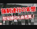 【ニコニコ動画】【強制連行の実態】 慰安婦と人身売買!を解析してみた