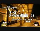 【ニコニコ動画】【ゆっくり】アメリカ横断記23 カリゼファ号 夜のカルゼファ編を解析してみた