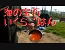 【ニコニコ動画】【NC700X】バイク と 朝市 と 庭キャンプを解析してみた
