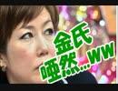 【ニコニコ動画】【パククネの無能っぷりに金慶珠、唖然 wwww】韓国大統領のを解析してみた