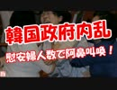 【ニコニコ動画】【韓国政府内乱】 慰安婦人数で阿鼻叫喚!(★こっちが本物)を解析してみた