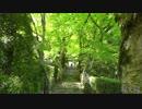 【ニコニコ動画】新緑の京都(2015/5/10)を解析してみた