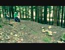 【ニコニコ動画】林道ツーリング 1を解析してみた