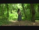 【ニコニコ動画】【アう゛ォ】ハロ/ハワユ【踊ってみた】を解析してみた