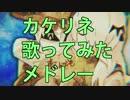 【作業用BGM】カケリネソロ10曲歌ってみたメドレー! thumbnail