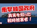 【ニコニコ動画】【衝撃韓国政府】 真実を知った戦時被害者!を解析してみた