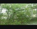 【ニコニコ動画】特急すずらん車窓 南千歳~沼ノ端を解析してみた