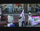 【2015/5/21】子供の未来を守れない日本国憲法in神保町4