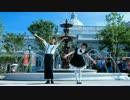 【ニコニコ動画】【囲碁君】【花兒花】試跳【嘘とぬいぐるみ】踊ってみたを解析してみた