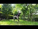 【ニコニコ動画】【とけは】elect  踊ってみた【初投稿】再アップを解析してみた