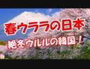 【ニコニコ動画】【春ウララの日本】 厳冬ウルルの韓国!を解析してみた