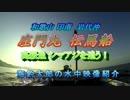 【ニコニコ動画】水中カメラ沈めてみた98 伝馬船の釣り!高級魚シマアジを追う!を解析してみた