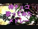 【作業用BGM】柿チョコソロ10曲歌ってみたメドレー! thumbnail
